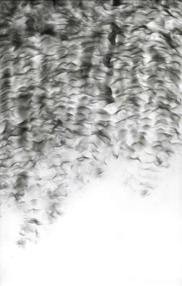 """Shirley Paes Leme Untitled, from """"Fumaça-Ação"""" Series, Frozen Smoke on Canvas. 120 X 80 cm, 1999. Courtesy: Bolsa de Arte"""